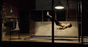 De la flexion qui précède le saut