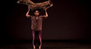 Danse et conférence avec Vera Mantero