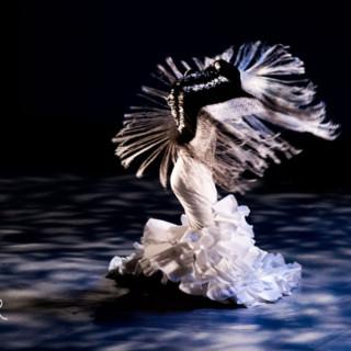 Rencontre passionnelle entre le classique et le flamenco!