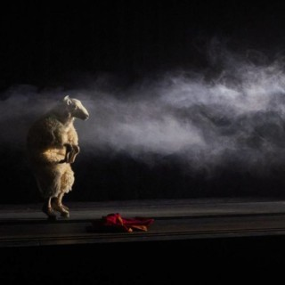 Mouton, tu redeviendras mouton